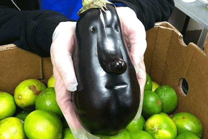 Funny-Looking Vegetables
