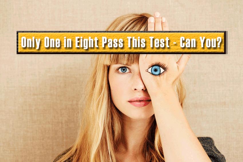 Perception Quiz